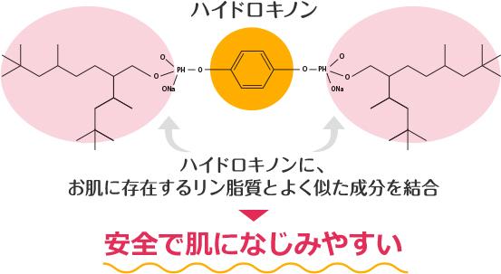 ハイドロキノンに、お肌に存在するリン脂質とよく似た成分を結合→安全で肌になじみやすい